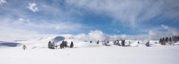 Haydon Valley Yellowstone