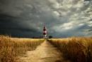 Barleystorm by almiles