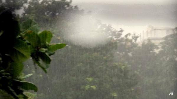 "\"" RAIN, rain and Rain........\"" by abssastry"