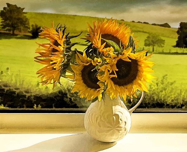 Sunflower Art by Irishkate