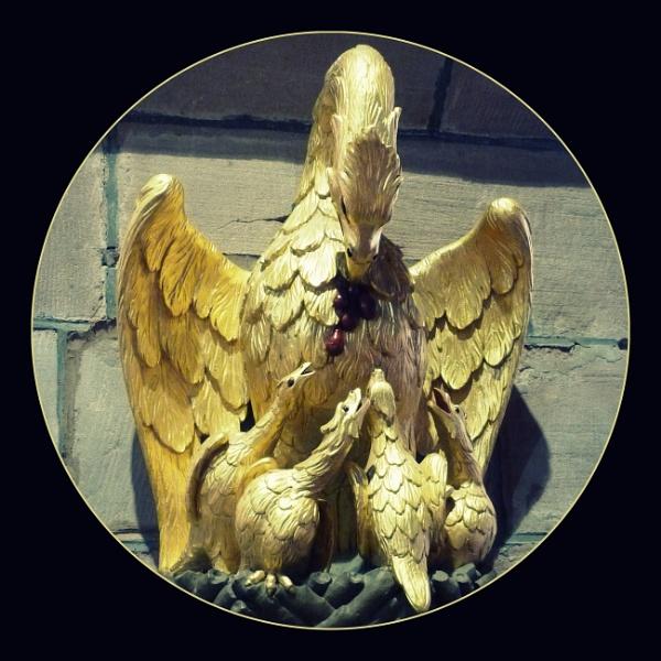 Golden Wonder by Philip_H
