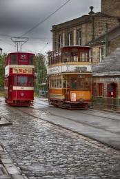 Tram Days