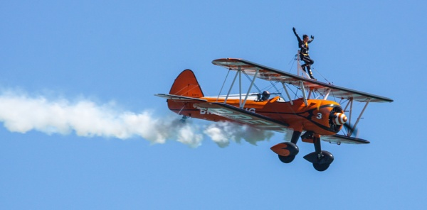 one wing walker by arnieg