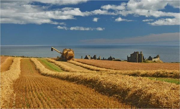 Dunnottar Harvest by MalcolmM