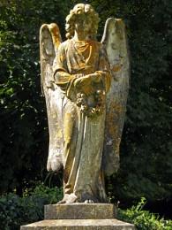 Gidleigh's Angel