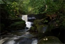 HEALEY DELL 2 by buxton