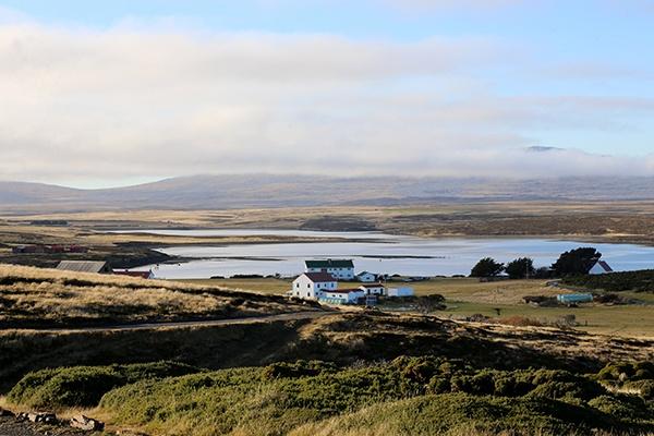 Darwin Falkland Islands by C7
