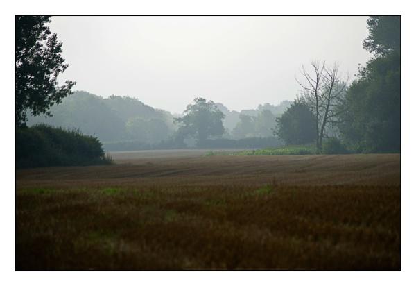 misty morning by alant2