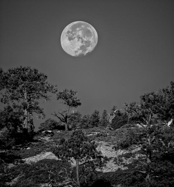 Hell\'s Backbone moonset by mlseawell