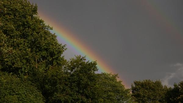 Rainbow by ShaunsPics