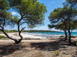Platya d'es Banyul, Son Saura Menorca