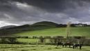 Three horses... by Scottishlandscapes