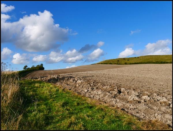 Scenes from the Wiltshire ridgeway including Liddington church. by brandish