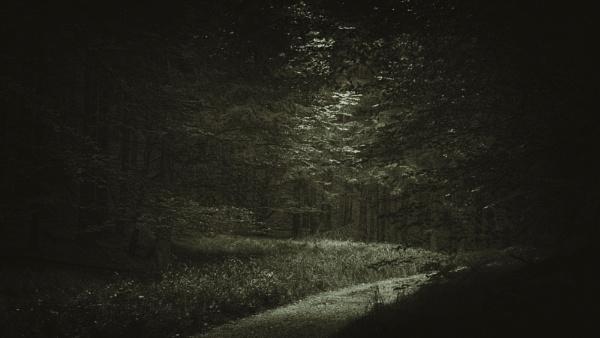 Path by gerainte1