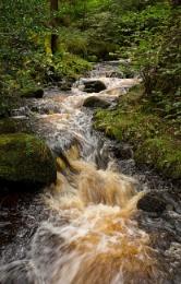 Flowing Through Wyming