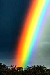 Colour burst