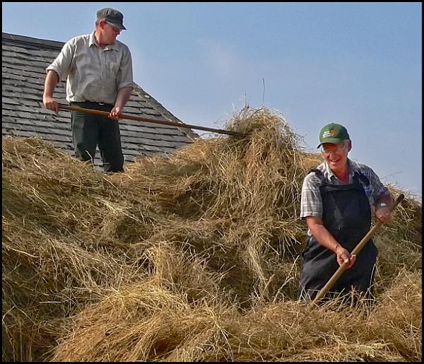 Haymaking by fentiger