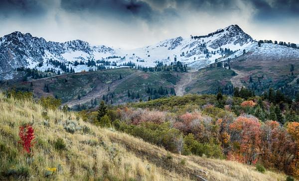 Mountain Autumn by mlseawell