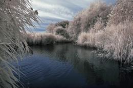 Martham Fishing Lakes - Infrared 720nm