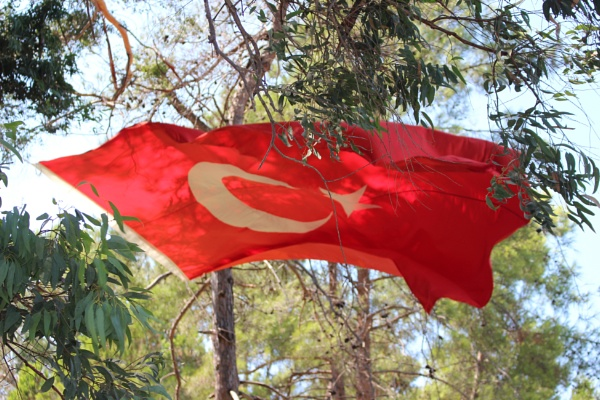 Turkish Flag by meirion