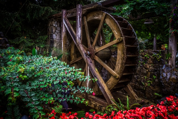 Garden Water Wheel by JohnnyG
