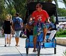 Rickshawe Split by ginz04