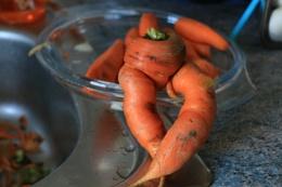 Carrot Legs