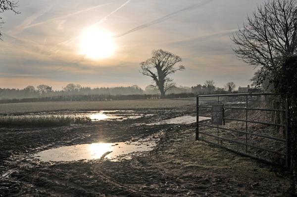 Winter Sun by Ingymon