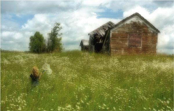 Summer Days... by MalcolmM