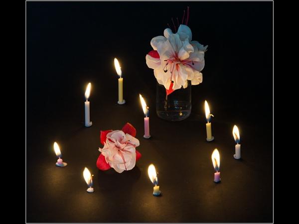 Fuschias - Further Candlelit Experiments