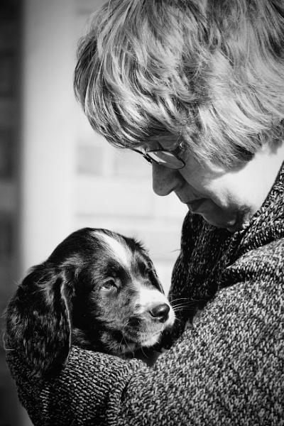 Puppy Love by altosaxman