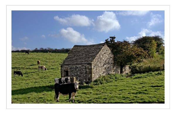 Derbyshire by sweetpea62