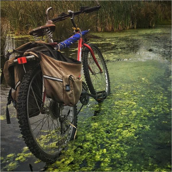 Bike..... by Dave_Henderson