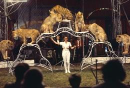1970's Circus Pic
