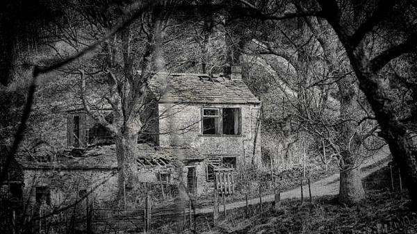 Empty by Loudon