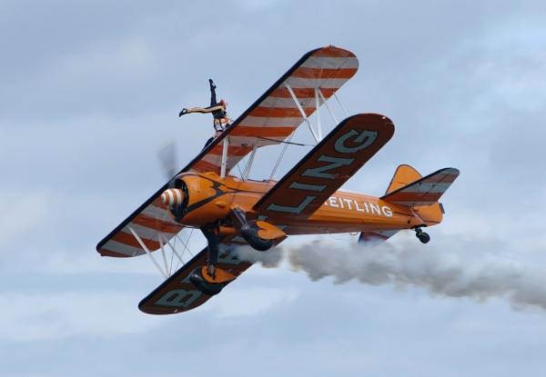 Has anyone seen my Pilot by GX20PAB
