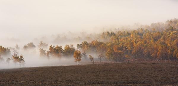 Autumn Hues by martinl