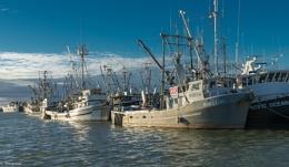 Steveston Fishing Village, Richmond BC IV