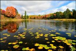 Canada in colour