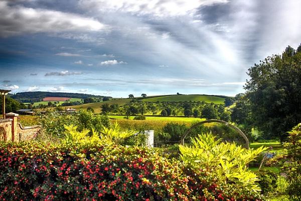 Devon Countryside by dudders82