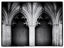 Gothic Noir by saxon_image