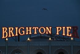 Brighton Pie