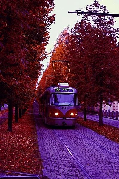 Tram in Prague by shadow_photo