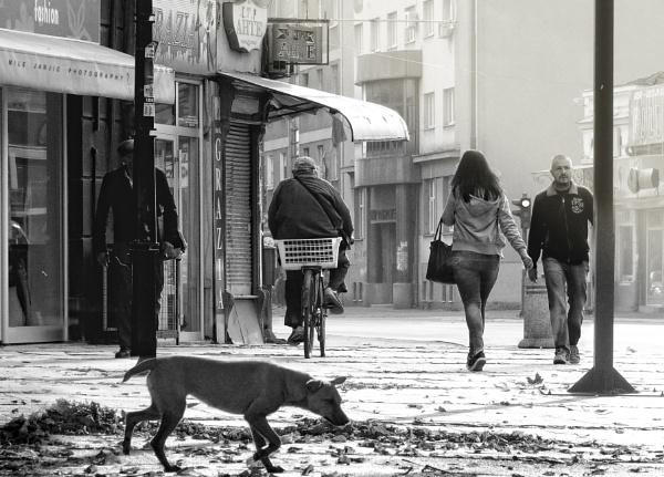 Urban Scene XIX by MileJanjic