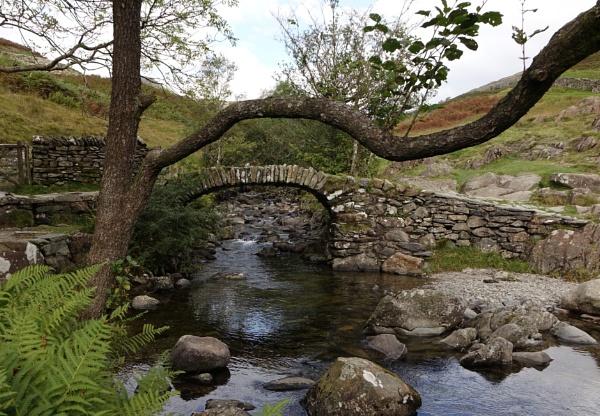 Stone Bridge by frogs123