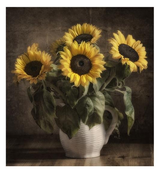 Sunflower Jug 2 by BigAlKabMan