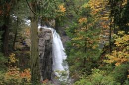 Fall Colours at Elk Falls near Campbell River BC