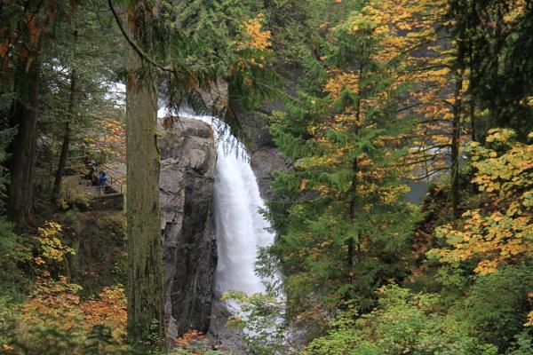 Fall Colours at Elk Falls near Campbell River BC by Bear46404