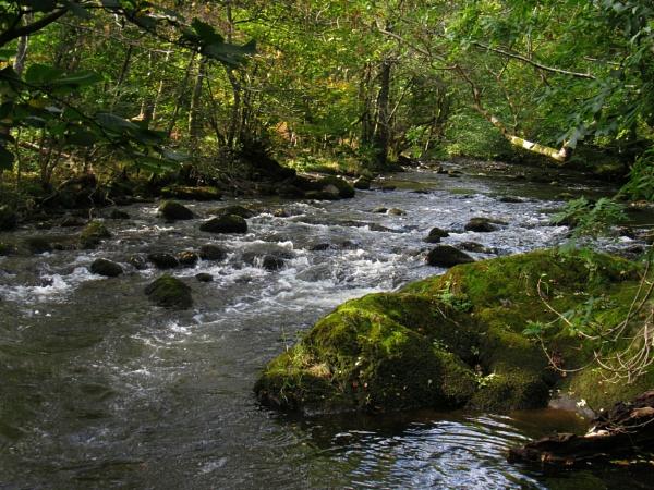 River Rothay by oldgreyheron