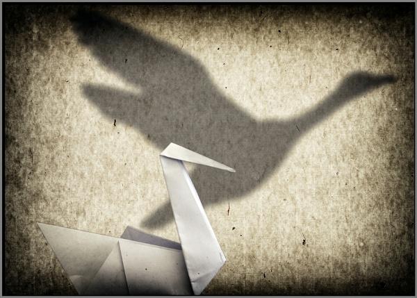 Swansong by ken j.